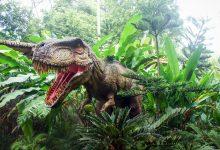 dinosauri360